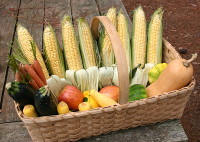 Uga Vegetable Gardening Publications