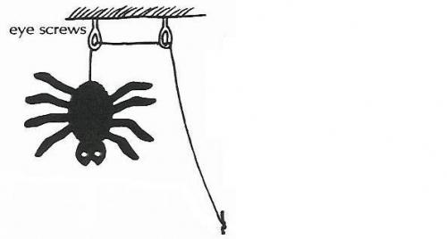 woopecker spider 3