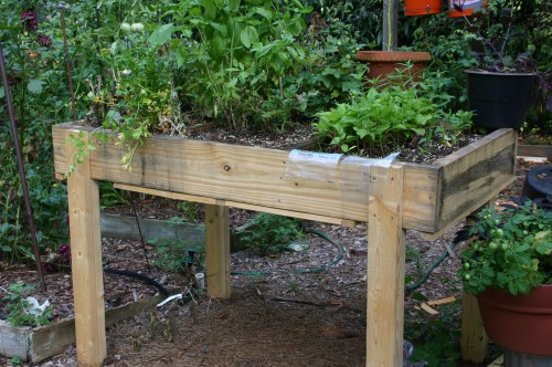 Build a Really Raised Bed Walter Reeves The Georgia