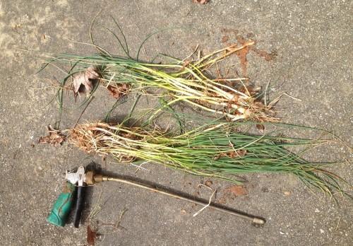 water-powered weeder