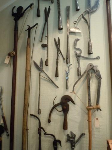 limb loppers