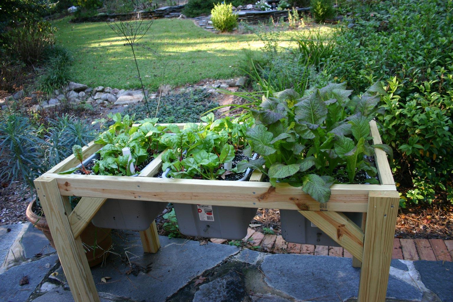 Diy self watering pots self watering planter