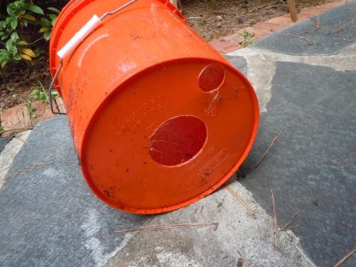 bucket garden 4