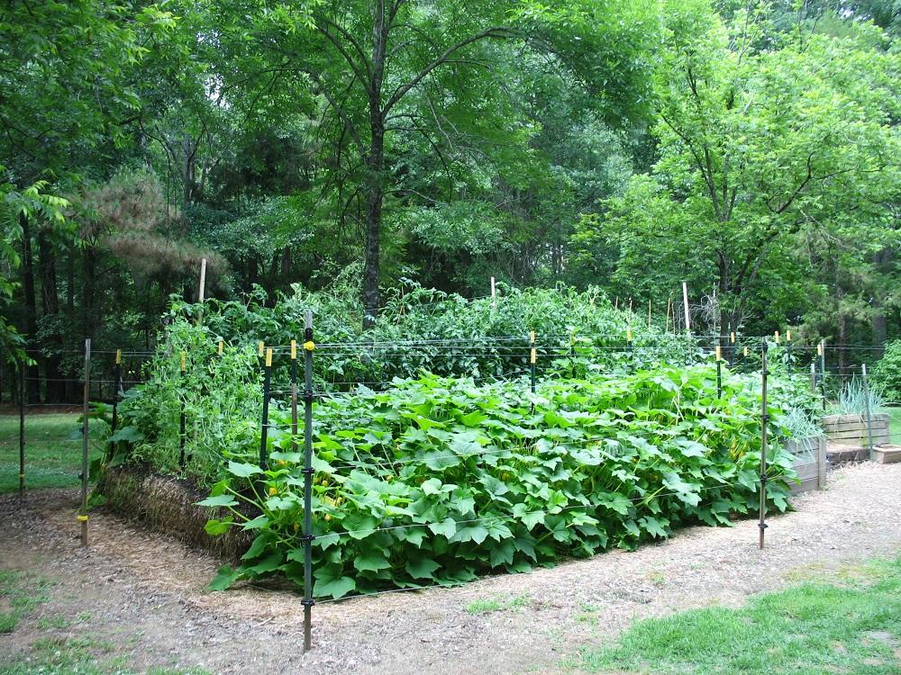 One Gardener's Project (update
