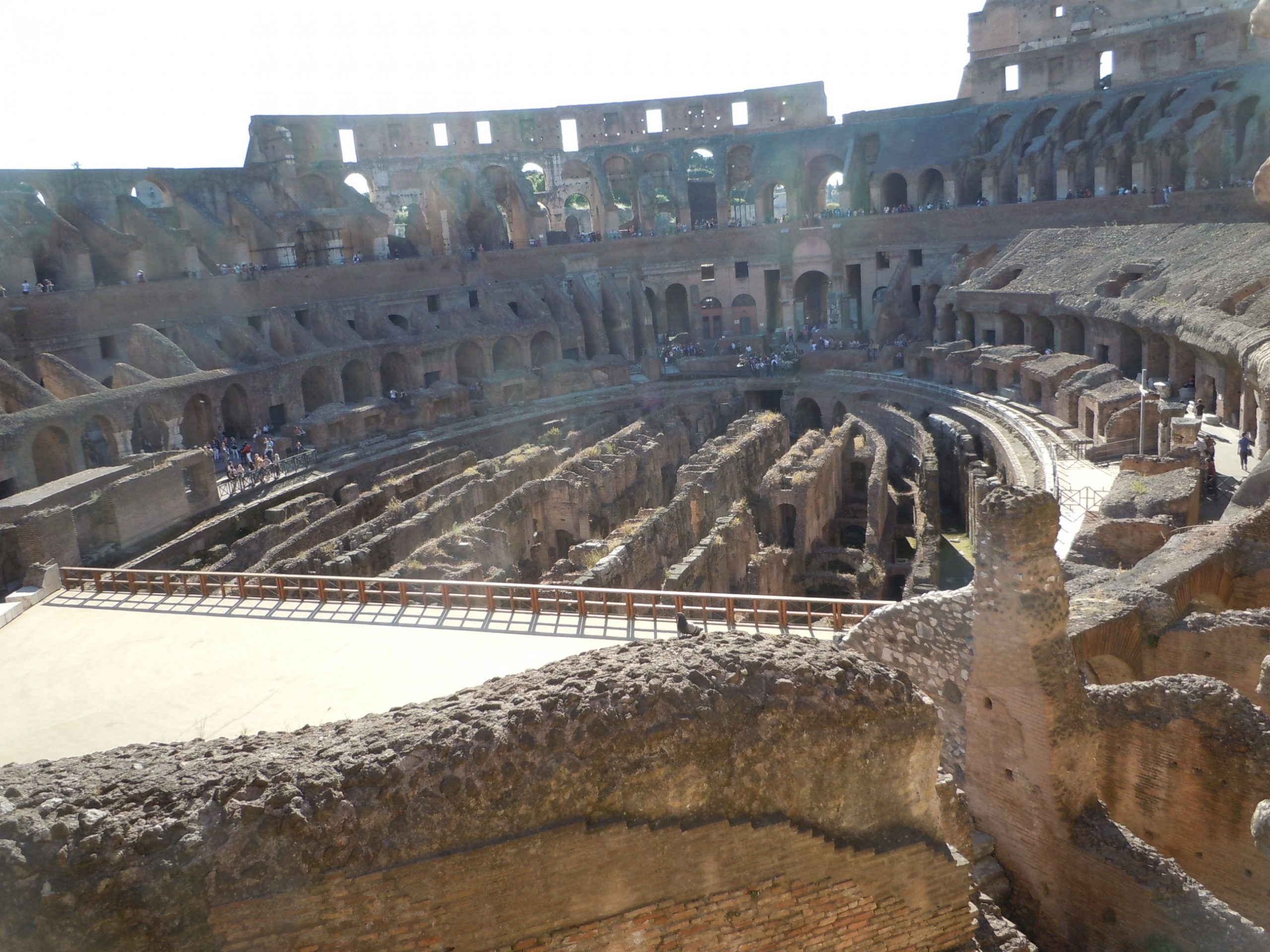the Colosseum could hold between 50,000 and 80,000 spectators