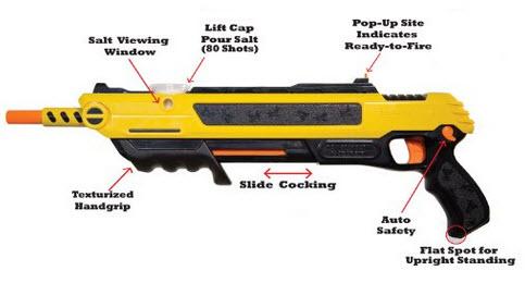 control carpenter bees with the bug-a-salt gun