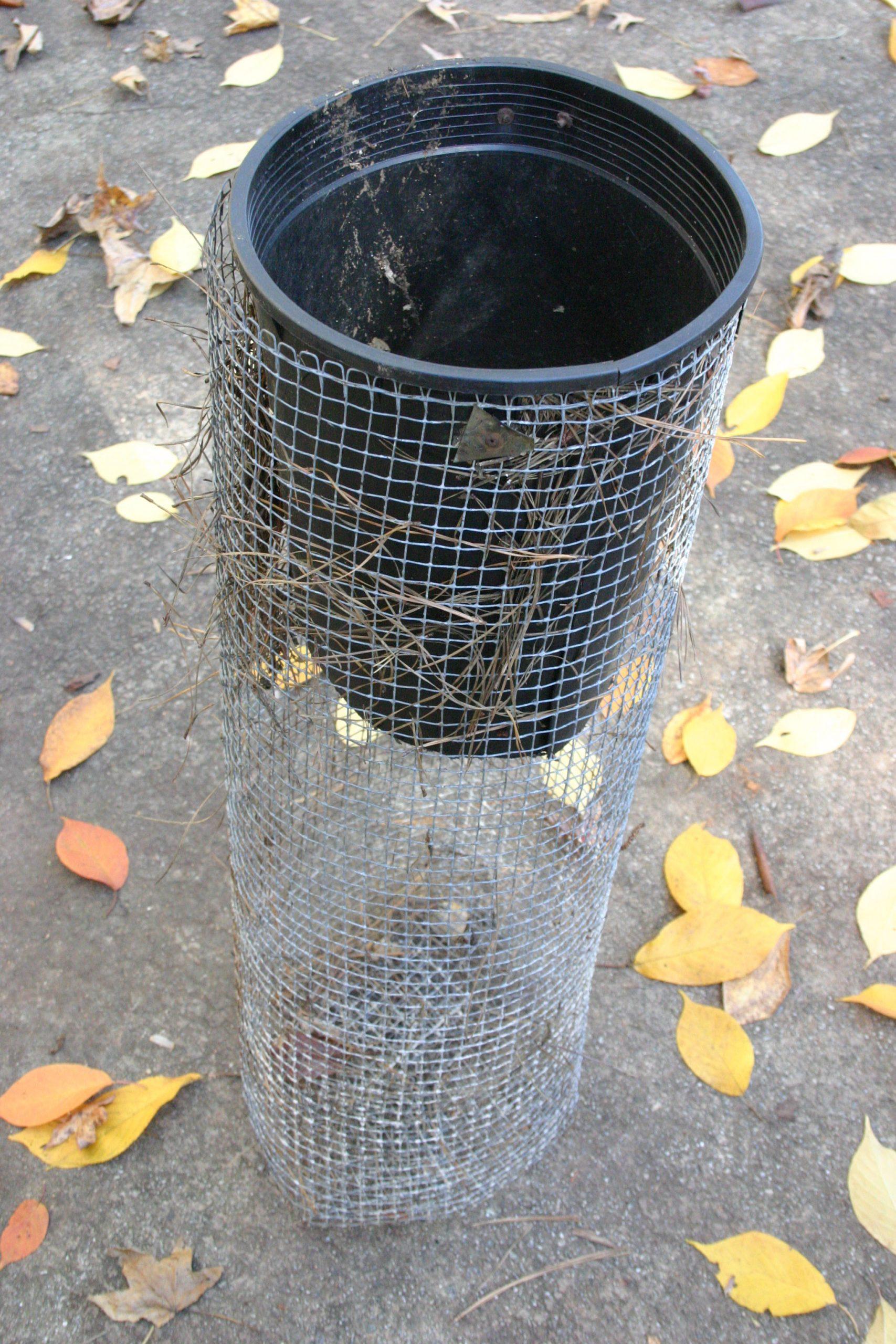compost rat excluder (2)