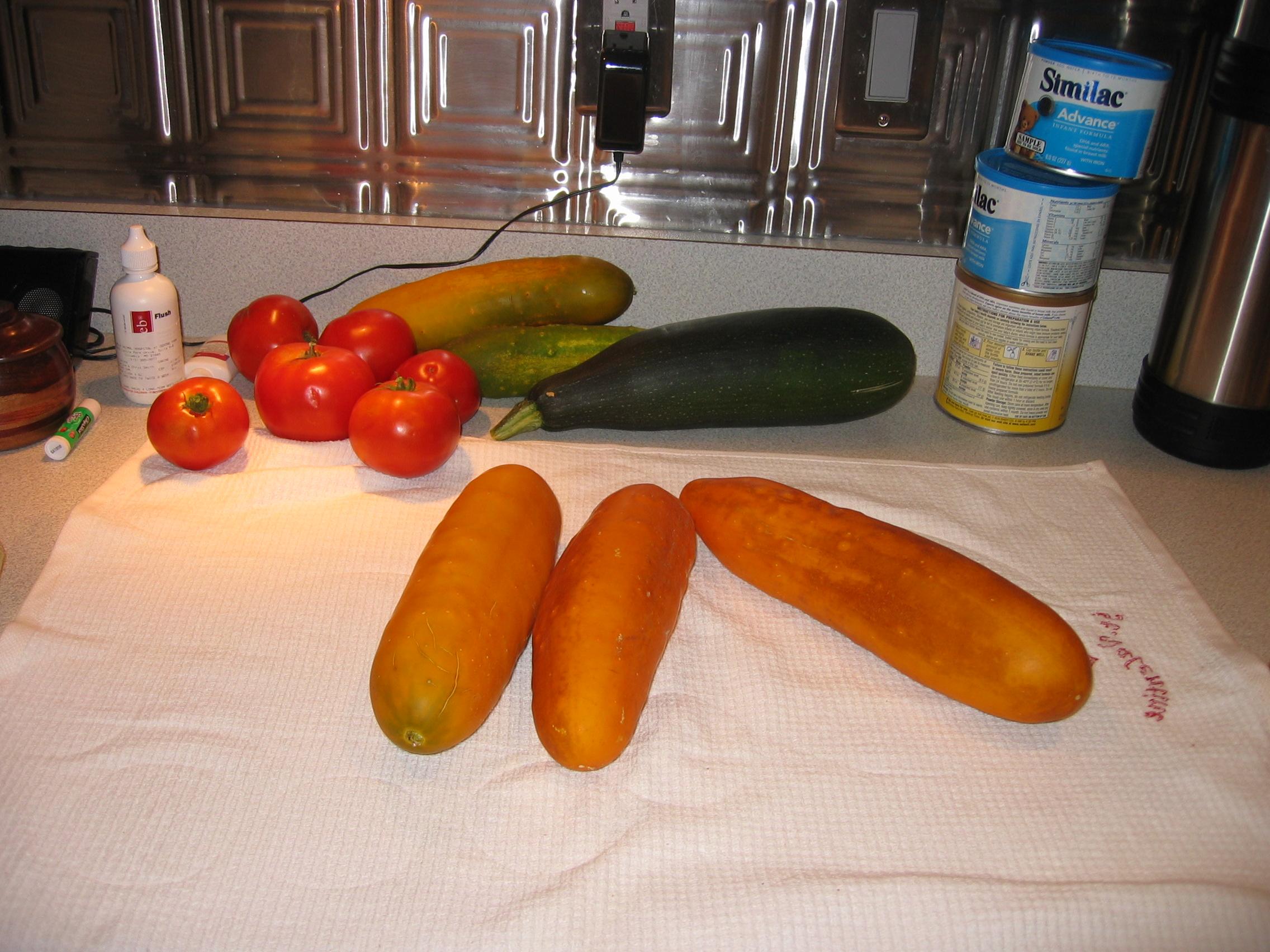 cucumber too ripe 1