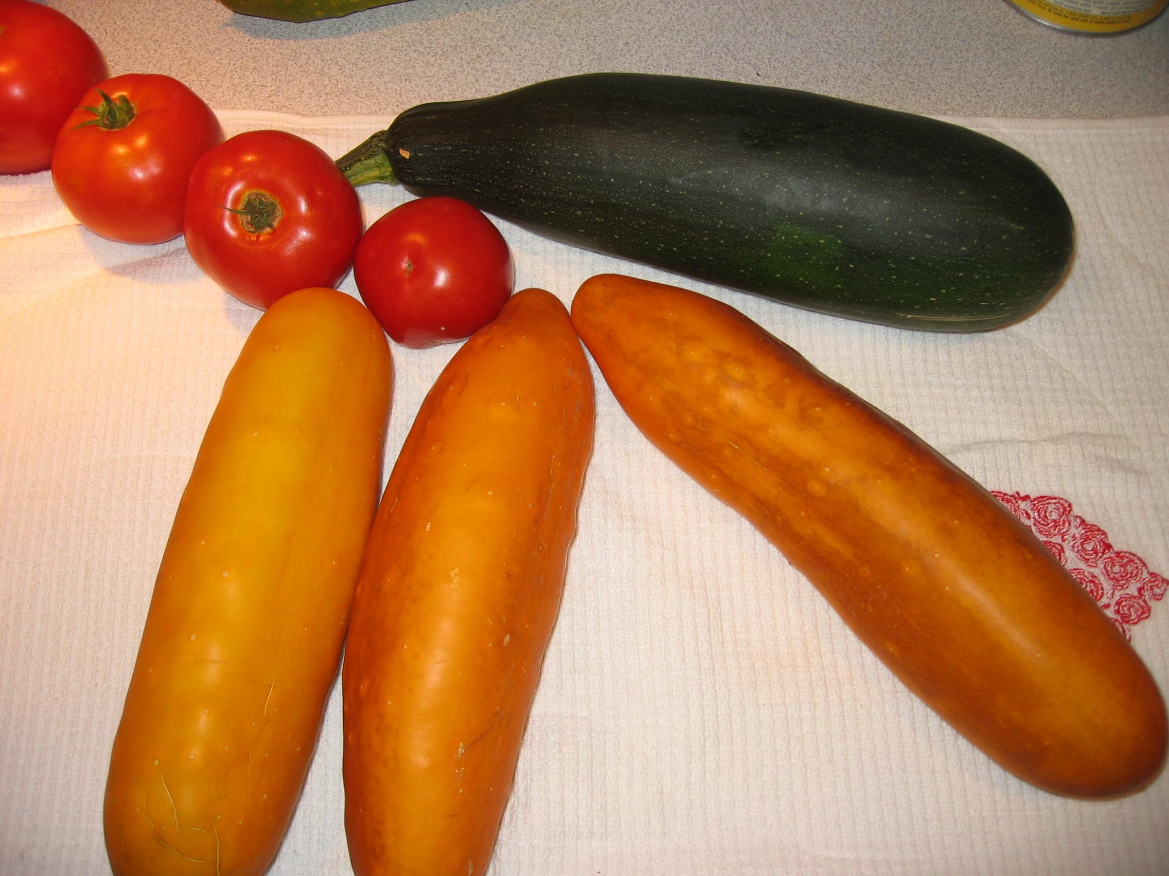 cucumber too ripe 3