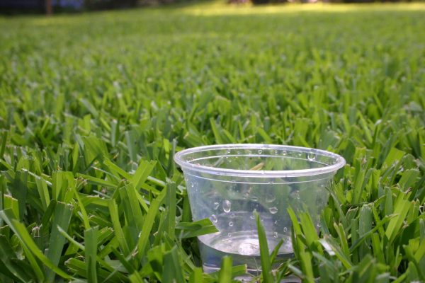 measure one inch of water by scattering a few cups in your lawn