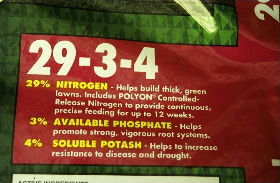 Best Bermudagrass Fertilizer