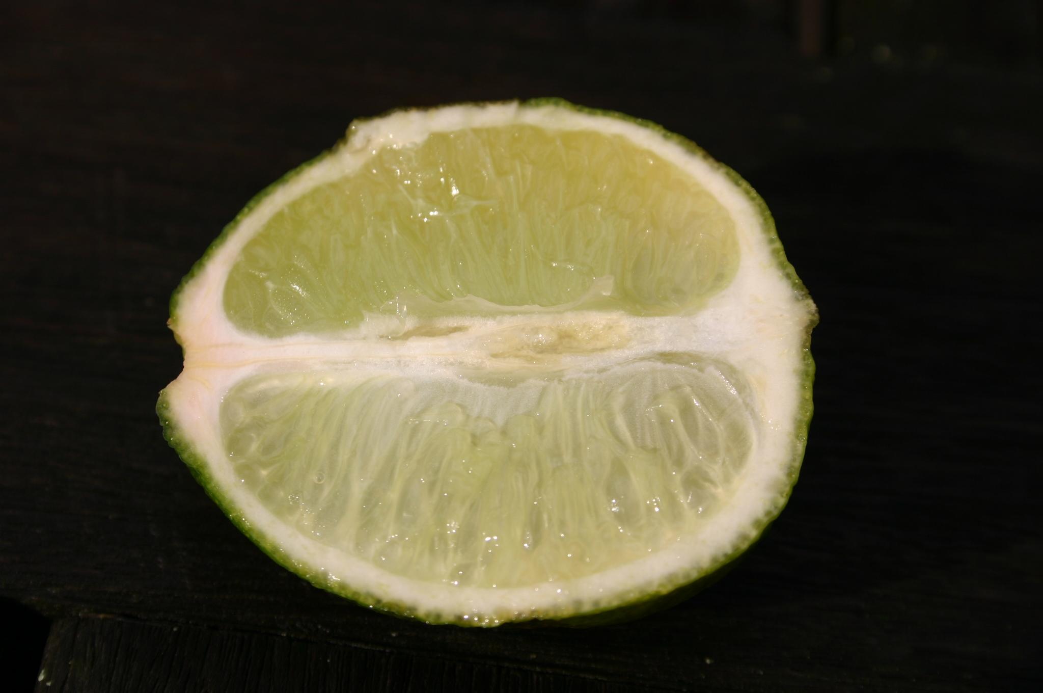 parthenocarpic lime