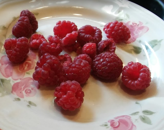 raspberry Bababerry