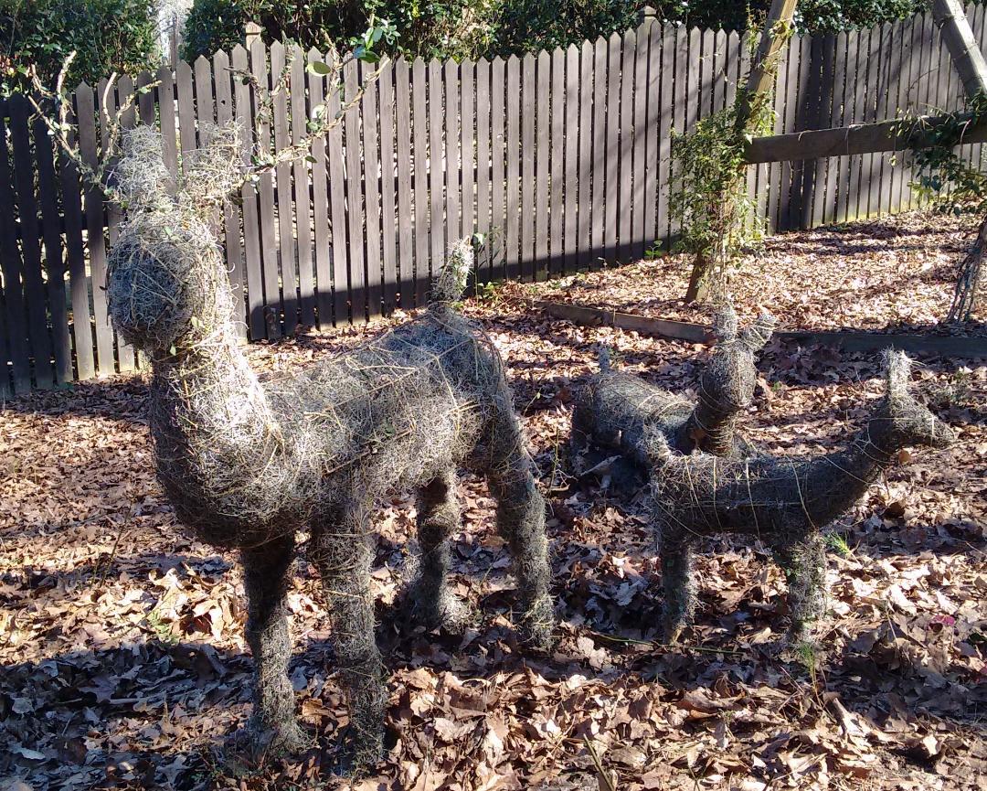 Make Topiary Using Spanish Moss Walter Reeves The Georgia Gardener