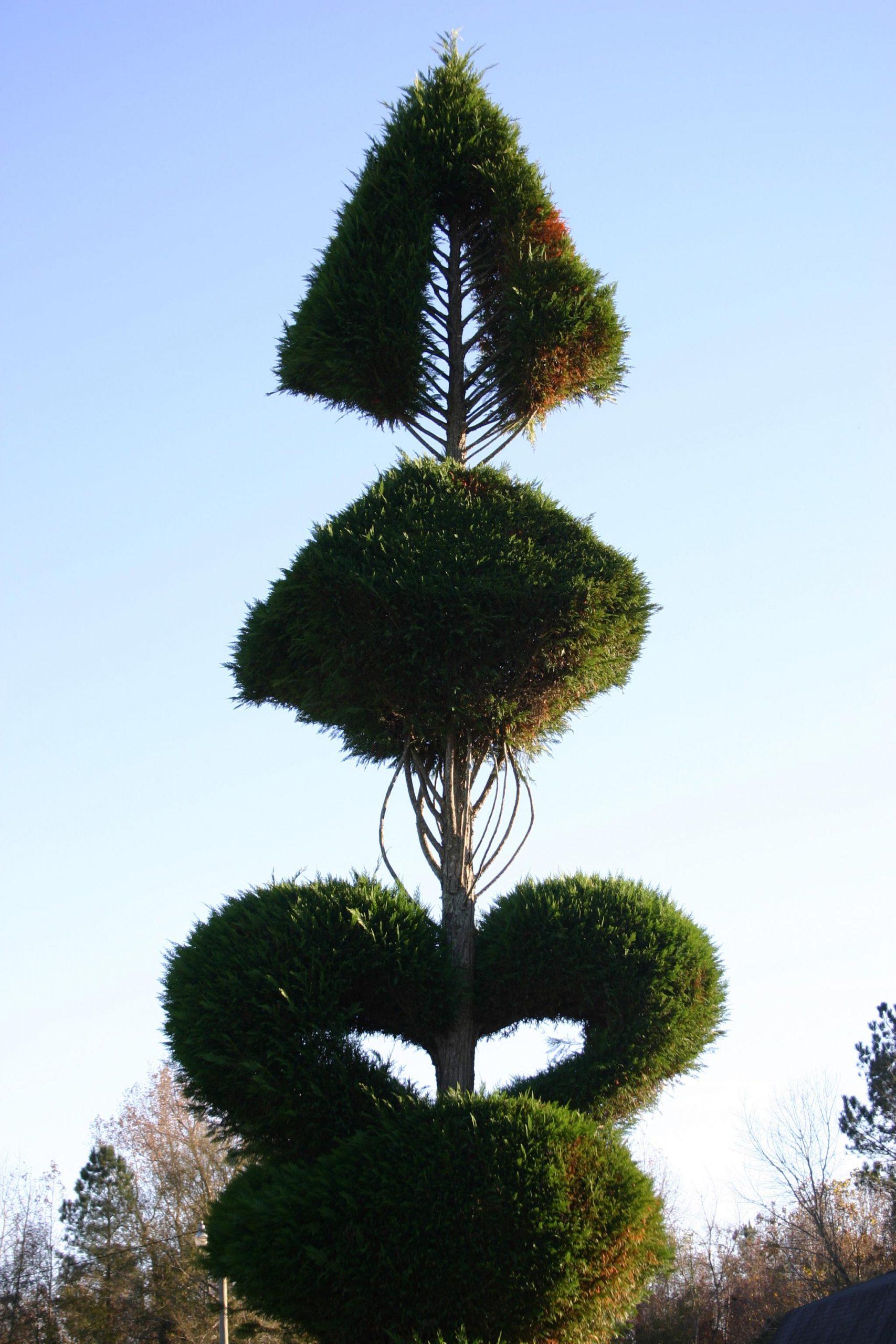 Pearl Fryar's garden