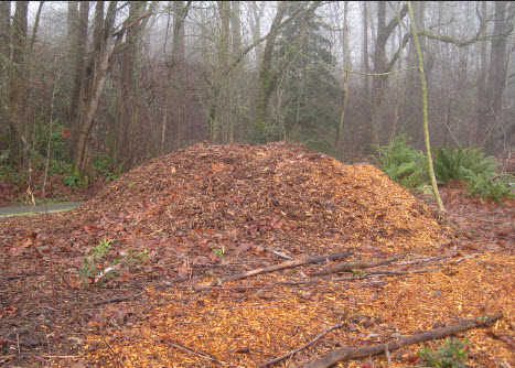 wood chip mulch Linda Chalker-Scott
