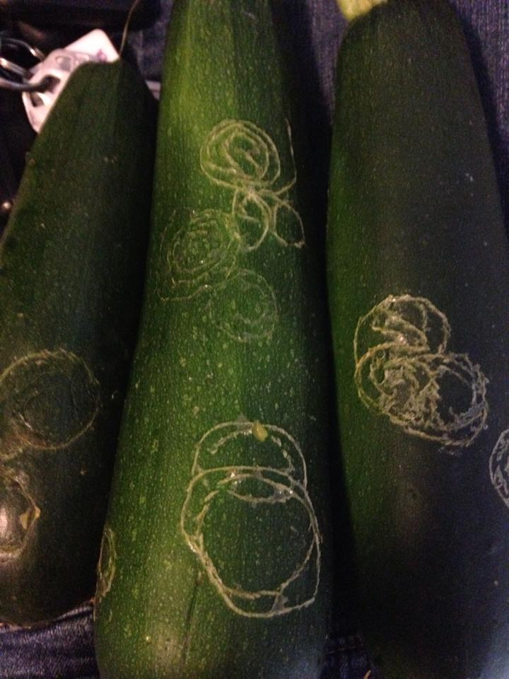 zucchini circles